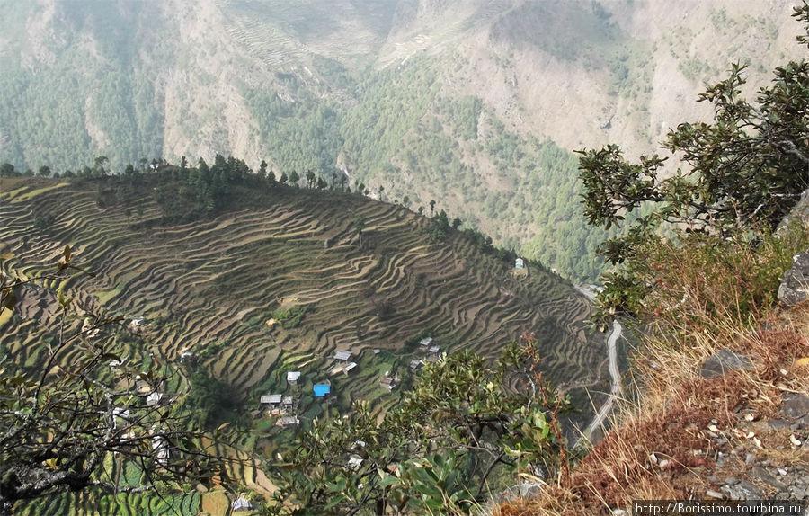 Каждый клочёк земли в Непале возделывается и приносит урожай. Обратите внимание на многочисленные террассы.
