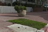 Впервые столкнулись с тем, что из отеля не смогли вызвать такси. Парень на ресепшн звонил минут 20, а потом сказал, что вызвать не может, так как все такси заняты, и единственным выходом для нас является идти к торговому центру, возле которого всегда много такси, и брать машину там.       Одно из первых впечатлений от Монтевидео — город жутко загажен собаками: газоны, тротуары, проезжая часть — все в собачьем дерьме. Загажен настолько, что по городу надо ходить в бахилах. Тот, кто откроет в столице Уругвая бизнес по продаже бахил, определенно, будет богат. Картина, которая до глубины желудка поразила меня в Сан-Паулу, когда парень, убирая за своей собакой, присел на корточки и до самых мелочей прибирал отходы, здесь, в Монтевидео — научная фантастика.