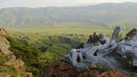 Долина реки Каракыстак. Луговской район. Киргизский хребет