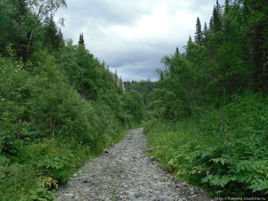 Дорога от Кии к Кундусуюлу
