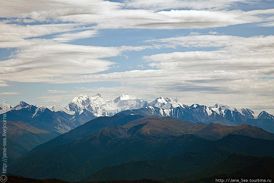 Вид на Белуху с Тургундинского плато