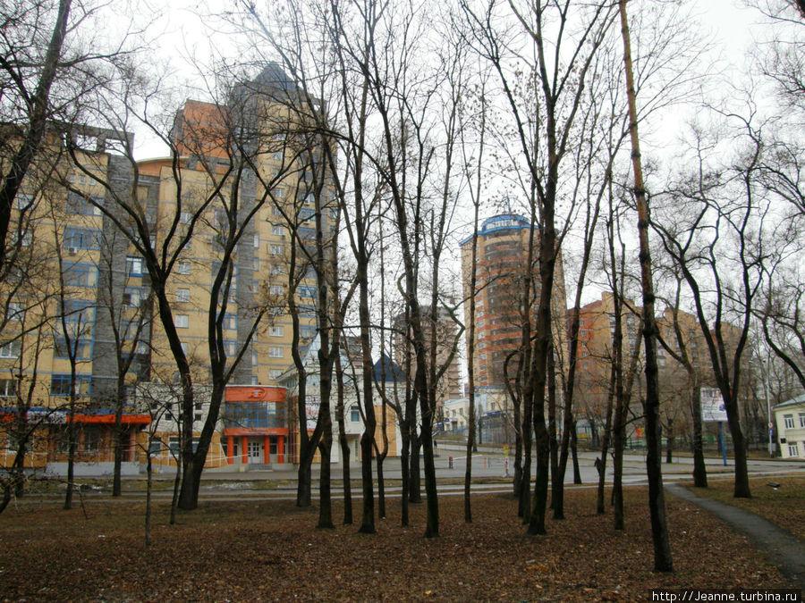 Уссурийский Бульвар... Сквозь деревья Уссурийского бльвара видны новые дома...