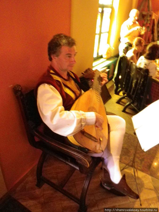 Музыкант играющий на лютне
