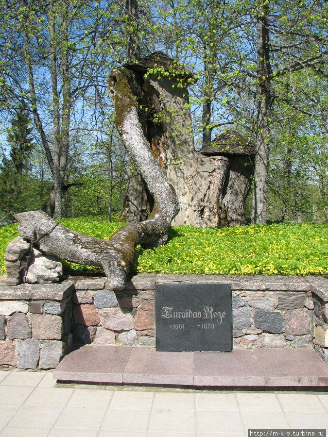 Памятное место Турайдской Розы Сигулда, Латвия