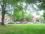 Вид на жилые дома через парк