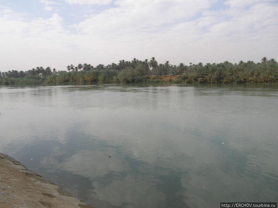 Евфрат рыбалка