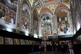Под фресками под стеклом выставлены богослужебные манускрипты, книги псалмов, принадлежавшие Папе Пию II