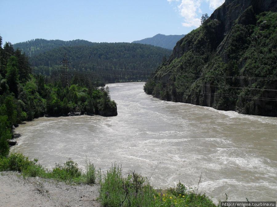 Катунь в Чемале