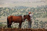 Показавает место, откуда роскошный вид на Евфрат