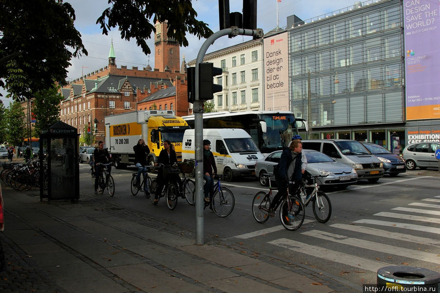 Велосипедисты едут по выделенной полосе. Как видно из фотографии, в городе есть все условия для комфортной езды...