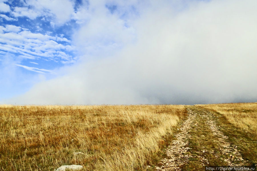 Внезапно туманное облако