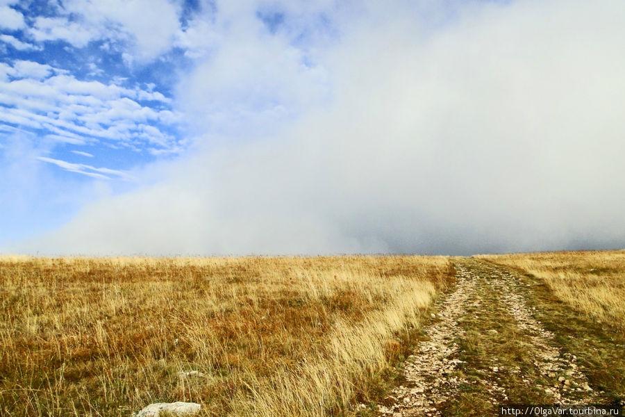 Внезапно туманное облако остановилось, словно наткнулось на невидимую преграду  и, постояв в задумчивости, поползло в другую сторону