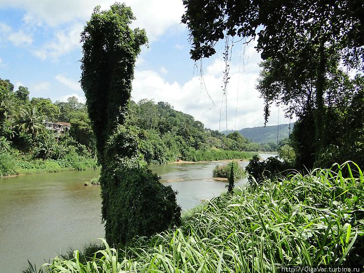 Река Махавели – самая бол