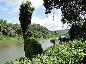 Река Махавели – самая большая река на острове.  Зародившись в высокогорной части острова, она протекает мимо Королевского сада, и устремляется на север, где южнее Тринкомали впадает в залив