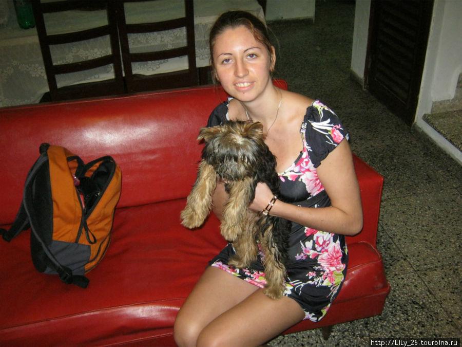 В доме у Пепе, собачка Фиона