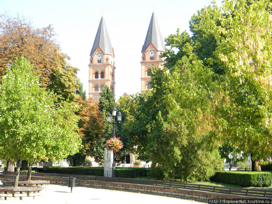Ниредьхаза -центр города