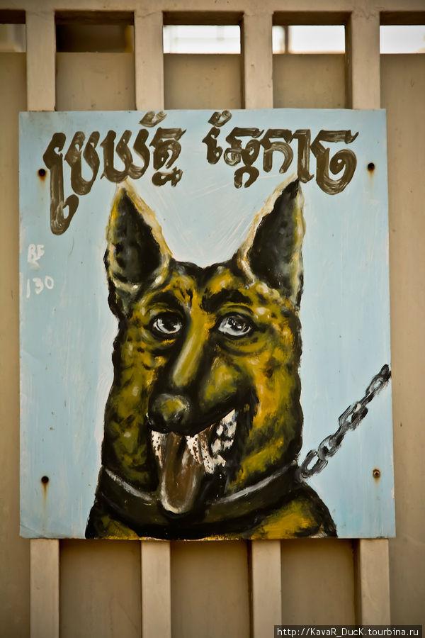 Осторожно — злая собака