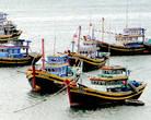 Основной улов вьетнамских рыбаков составляют  пангасиус, креветки и тунец, вполне знакомые нам названия. К примеру, ежегодно вьетнамцами вылавливается до 200 тысяч тонн тунца, а тунцеловный флот насчитывает более 10 тысяч судов