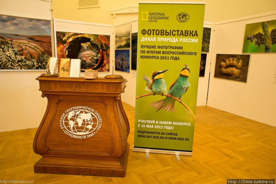 Фотовыставка «Дикая природа России»