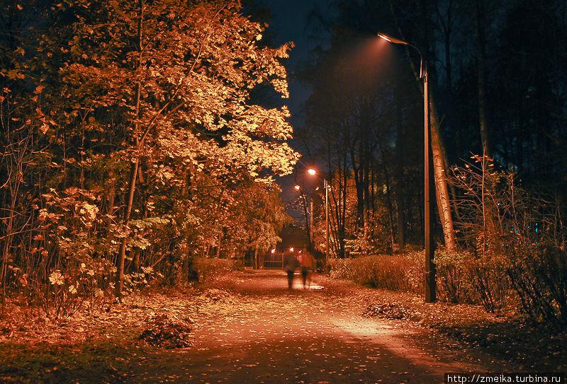 Ночью в парке таинственно и темновато, т.к. подсвечиваются только асфальтовые дороги. Если идти по лесу, то там будет как в лесу — темно :) Говорят, что тут можно натолкнуться на цыганок-гипнотизерш, которые силой мысли заставят вас отдать все свои богатства. Я сама никогда никого такого не встречала :) Не очень хорошо, что в темное время парк подсвечивают оранжевыми фонарями — на фотографиях это очень не красиво выглядит.