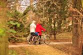 Велосипеды — популярный на Курортном острове транспорт.