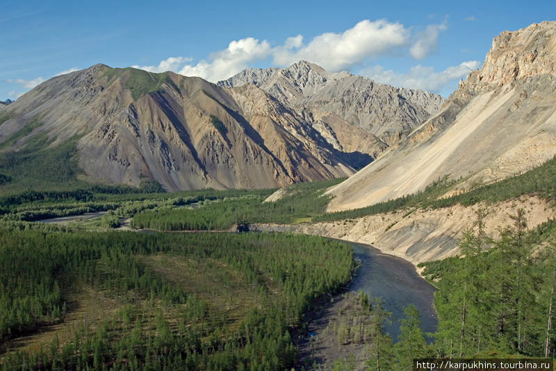 Река Омулёвка. Именно здесь она входит в Омулёвское среднегорье. Возвышающийся почти на две тысячи метров над уровнем моря горный барьер не может остановить бег этой настойчивой реки, как впрочем, и многие другие препятствия на протяжении ещё нескольких сотен километров, прежде чем отдаст она свою воду Колыме. Не редко на берегах этой реки можно встретить медведя или дикого оленя, а на склонах гор и снежного барана.