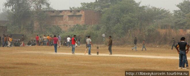 Крикет – полный стадион.  На матче.