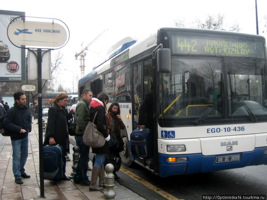 Автобус до аэропорта.