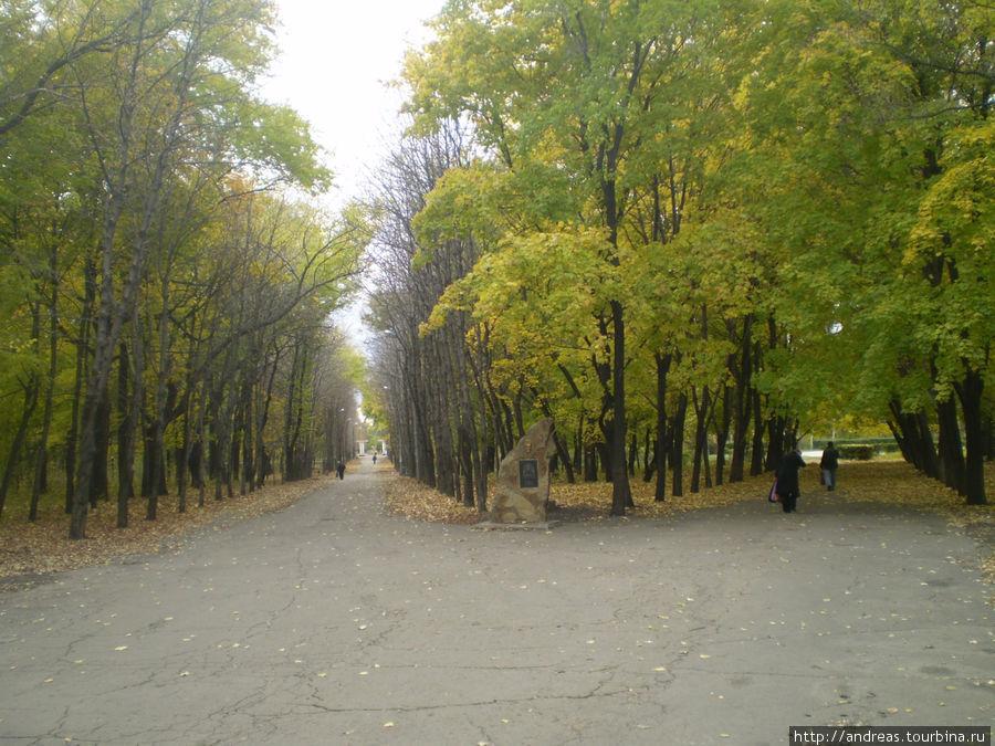 Парк в Красном Луче