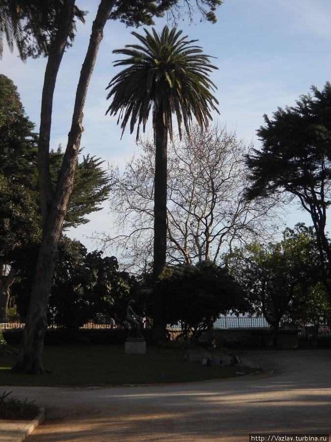 На аллеях парка