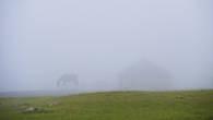Утренний туман. Айжантас. Резкие перемены погоды в высокогорье часто мешали съемкам. Но иногда дарили и такие удивительные состояния.