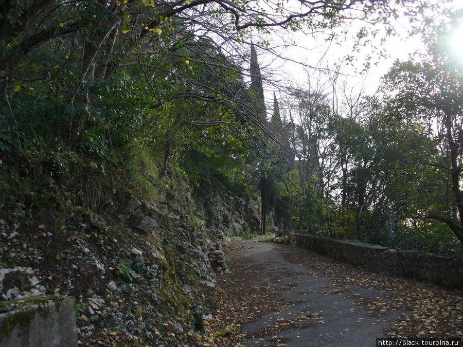 Дорога к замку принца Ольденбургского