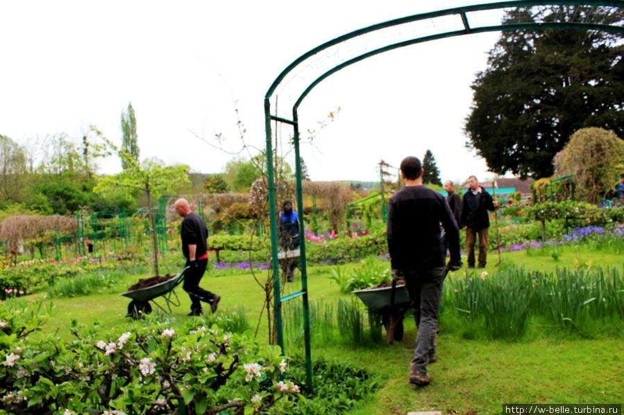 Садовники работают.