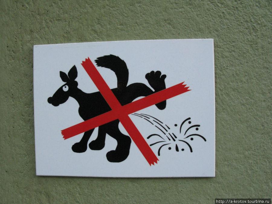 картинка собакам не гадить актриса испытывала