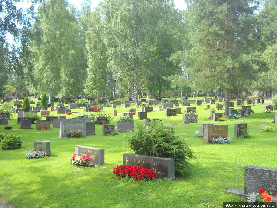 Замки в финляндии фото щенки