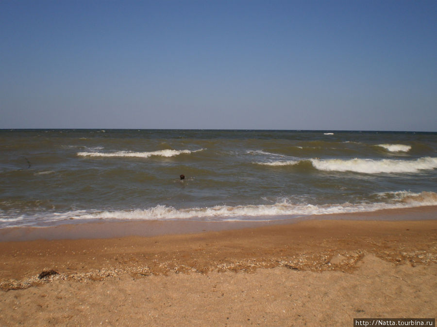 садовых работ азовское море темрюк фото сегодня вытащила семейство