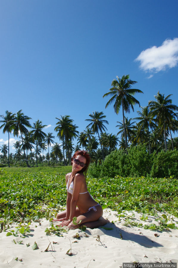 punta-cana-topless-video